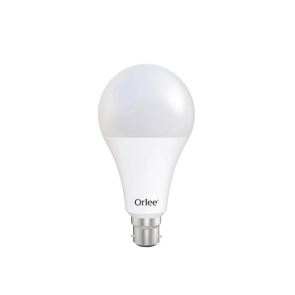 Picture of Orlee AC LED 20W Daylight Bulb B22 (Pin)
