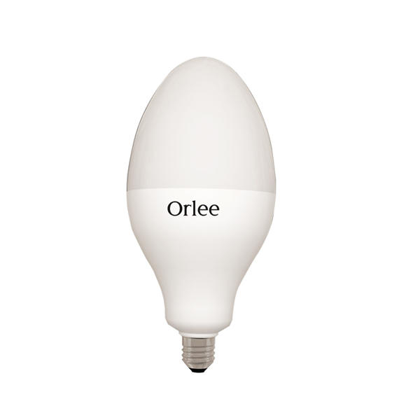 Picture of Orlee Bowling AC LED 50 Watt Daylight Bulb E-27(Patch)